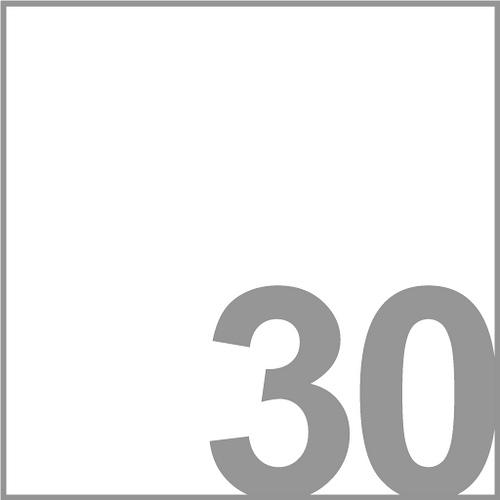 30 Boxes Logo